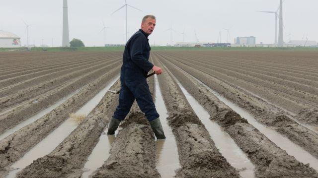 Ondergelopen land in NO-Groningen. Foto: Jannes Wiersema