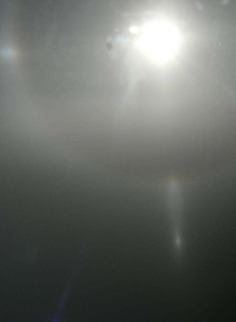 1284_lower_sunvex_parry_arc.jpg