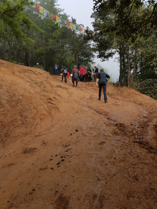 De klim naar Taksang over een soms lemig pad is een glibberige onderneming. Soms lukt het het beste door het bos.